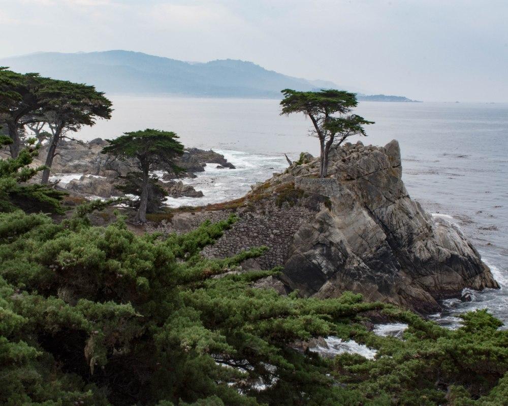 Monterey-15