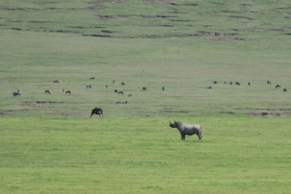 Tanzania-5015